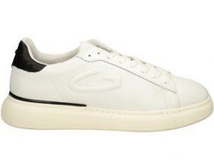 Guardiani Agm003703 Leather White